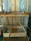 Клетка для попугайки. Фото 1.