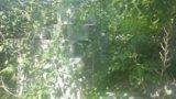 Пеноблоки. Фото 3.