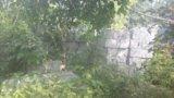 Пеноблоки. Фото 4.