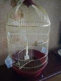 Клетка для птиц. Фото 3.