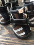 Ботинки для собаки. Фото 2.