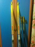 Комплект беговых лыж. Фото 4.