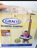 Прыгунки детские graco bumper jumper little jungl. Фото 3.
