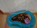 Аквариум для черепах. Фото 2.