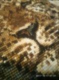 Картина вышитая крестиком шерстью гепард. Фото 3.