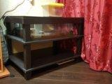 Террариум-стол. Фото 2.