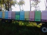 Ульи для пчёл из ппу. Фото 3.