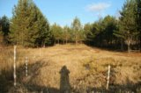 Участок, 6 сот., сельхоз (снт или днп). Фото 4.