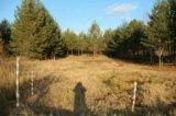 Участок, 6 сот., сельхоз (снт или днп). Фото 5.
