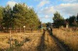 Участок, 6 сот., сельхоз (снт или днп). Фото 9.