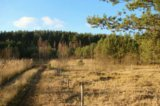 Участок, 6 сот., сельхоз (снт или днп). Фото 11.