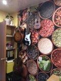 Уроки игры на гитаре , укулеле. Фото 1.