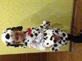 Новогодние костюмы на прокат. Фото 3.