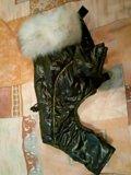 Зимний комбинезон для собаки в отличном состоянии. Фото 1.