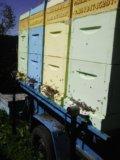 Ульи для пчёл из ппу. Фото 2.