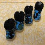 Ботинки для маленькой собаки. Фото 1.
