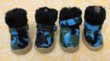 Ботинки для маленькой собаки. Фото 3.