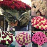 Цветы на день влюблённых розы. Фото 1.
