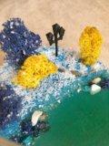 Флорариум, моссариум. Фото 2.