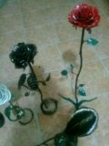 Роза ковка. Фото 4.