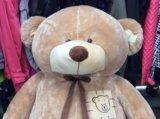 Медведь новый. Фото 1.