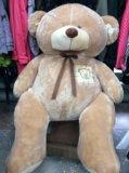 Медведь новый. Фото 2.
