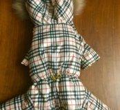 Зимний костюм для собак S/M