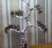 Дерево Бонзай