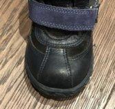 Dandino 23р, зима, кожаные на натуральном меху