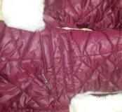 зимнее пальто орби