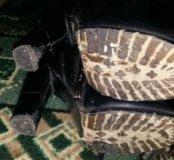 Сапоги зимние натуральная кожа
