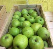 Яблочки домашние симиренко