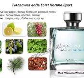 Eclat Homme Sport men