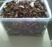 Сушенные белые грибы