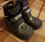Ботинки осенние. Артемон