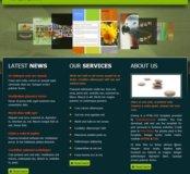 Создание веб сайтов .