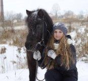 Зимние Прогулки на Лошадях.