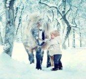 Катание детей на пони