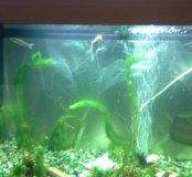 Продается аквариум 120 литров