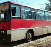 Автобусы икарус 256