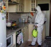 Обработка квартир от насекомых