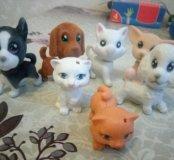 Набор собак и кошек