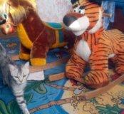 Качалка тигр