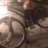 Велосипед Miss Stels 7100