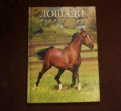 Лошади. Мир животных