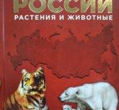 Красная книга России. Автор Тихонов