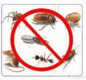 Травим насекомых