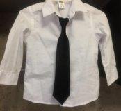 Рубашка Остин Кидс 86размер