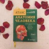 Анатомия человека. Билич. том 1