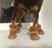 Обувь для собак новая
